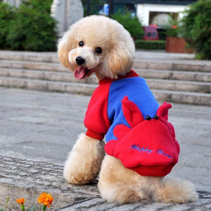 beow贝欧时尚狗狗衣服 宠物服饰 可爱卡通狗服装 嘻哈兔 s高清实拍图