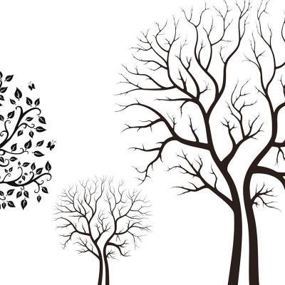 树的平面图手绘黑白