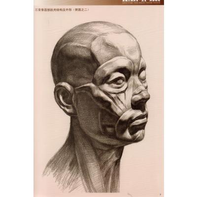 素描人物头骨五官头像表现