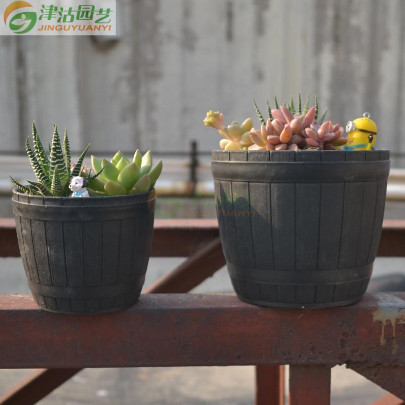 多肉植物组合盆栽 深深的怀念 花盆 土 5种多肉 装饰
