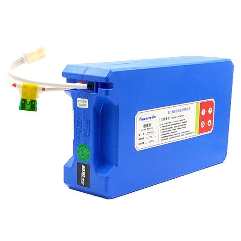 (lt款)13串电芯【含标准充电器】电瓶车动力蓄电池