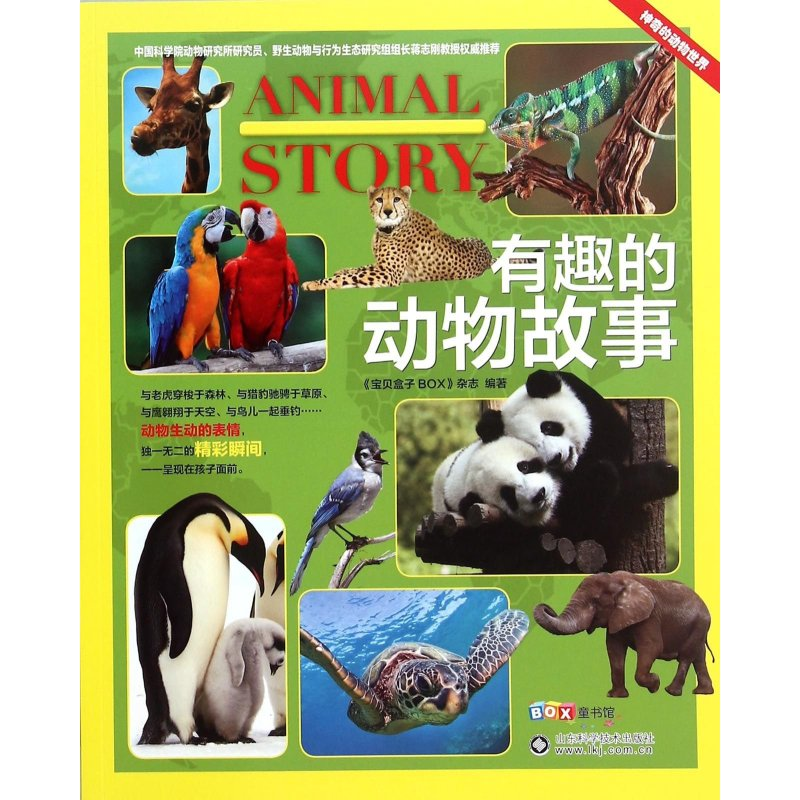有趣的动物故事图片