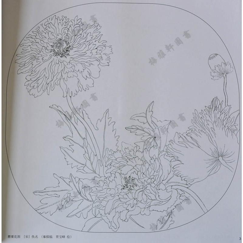 铜板纸彩印 国画工笔白描线描底稿 入门教程 荷花牡丹菊花兰花梅花