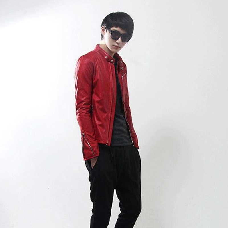 2013新款皮衣男士外套立领皮衣北京青年电影何北同款图片