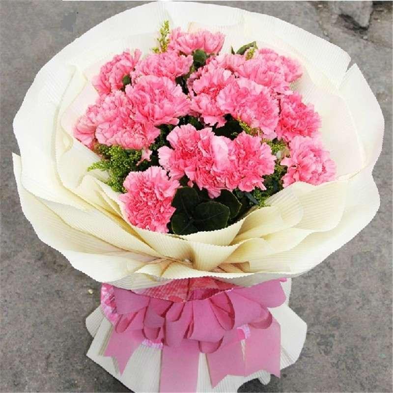 全国鲜花速递 19朵粉康乃馨花束