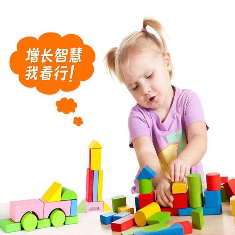 浩浩木玩动物乐园100粒积木