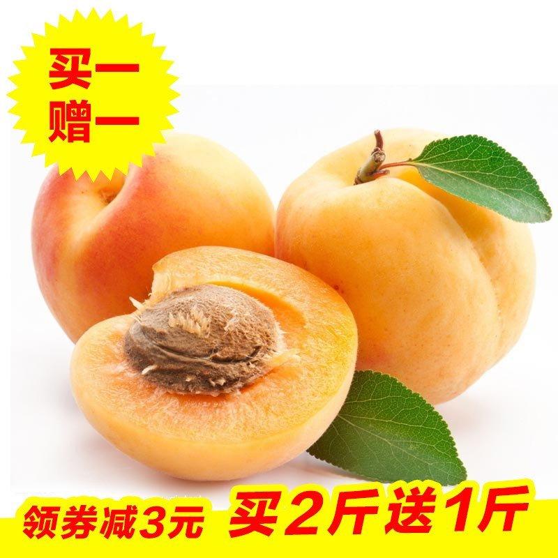 山东特产 泰安红玉杏2斤装(买2斤送1斤 实发3