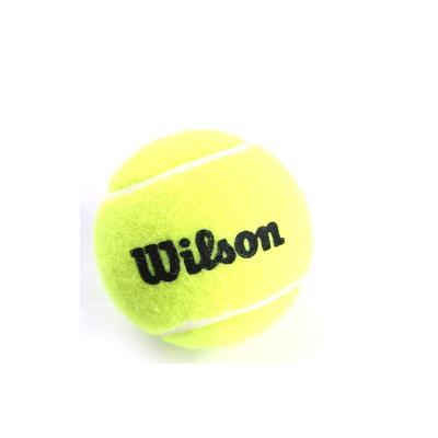 Wilson 威爾勝 IFT 網球 正品 高級無壓耐用訓練網球