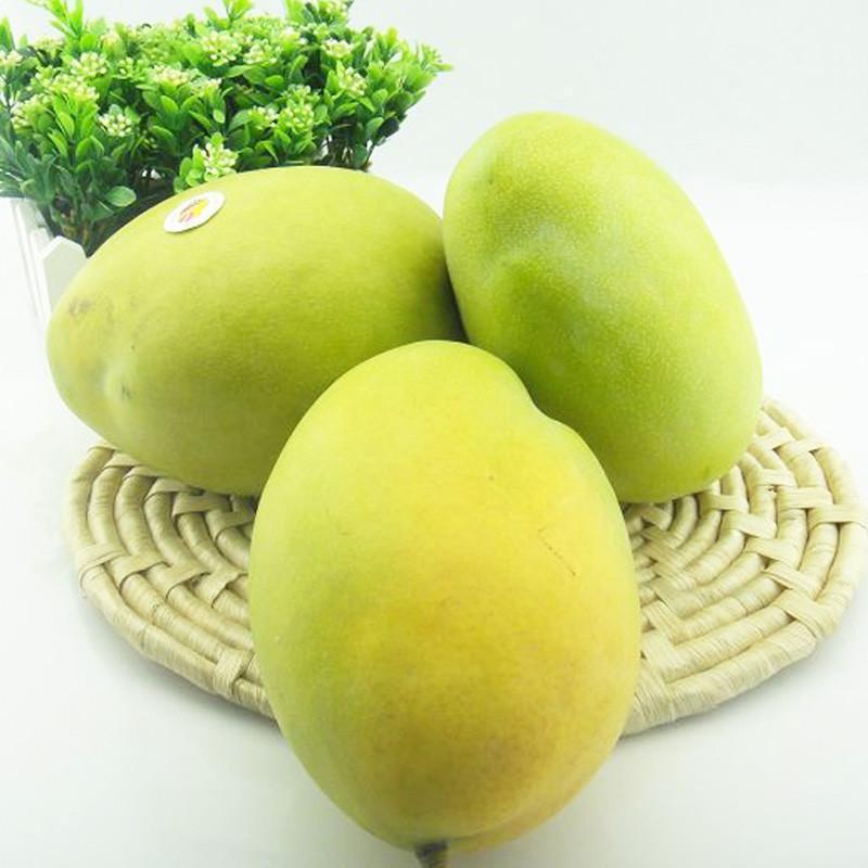 【世果汇】海南大凯特芒果5斤 青皮芒 热带新鲜水果 包邮图片