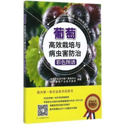 葡萄高效栽培與病蟲害防治彩色圖譜