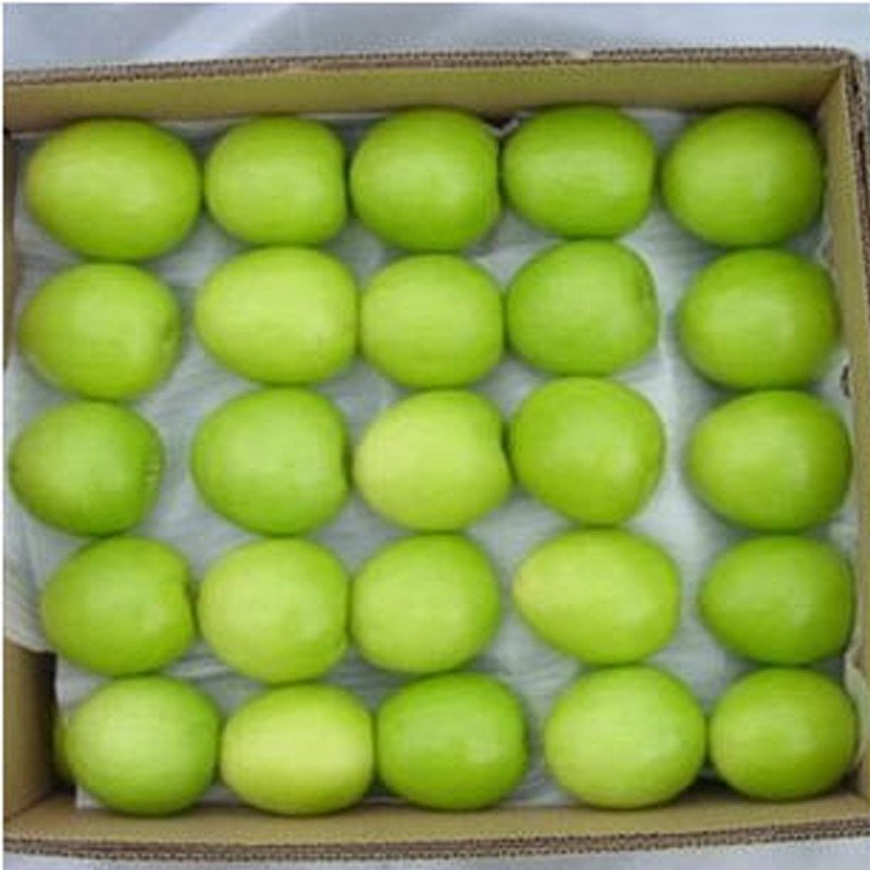 【米又】大青枣台湾牛奶枣甜枣青果5斤装 米又(miyou)