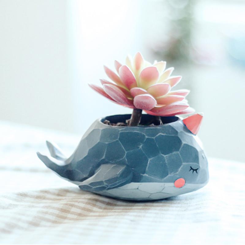 创意可爱多肉花盆卡通小动物植物装饰小摆件盆栽小容器-鳄咻咻花盆
