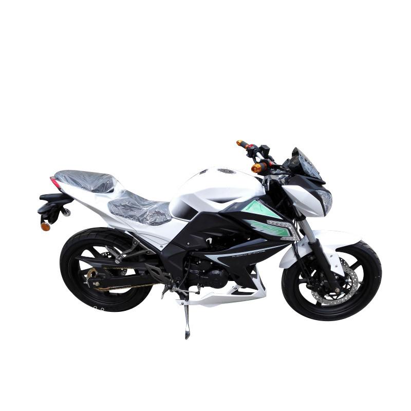 新宝摩托车跑车 街跑 翼虎 燃油跑车街车 拉风耍酷车助力车 可上牌