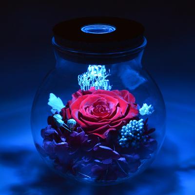千梦花丝语 鲜花速递 永生花礼盒许愿瓶 红玫瑰花 保鲜花速递 创意礼品生日礼物送女朋友老婆七夕情人节礼物