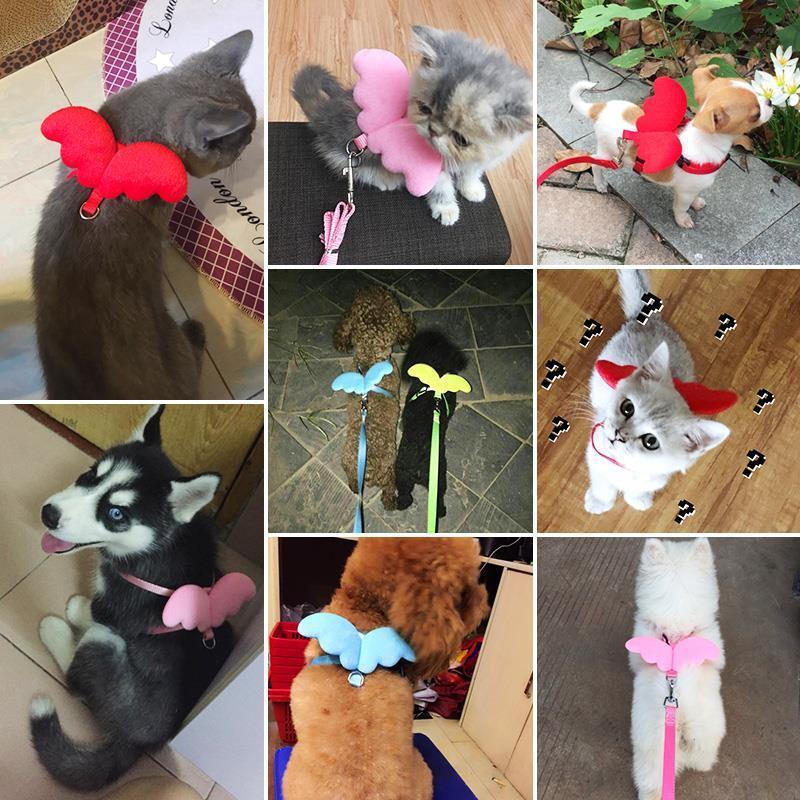 狗狗背带幼犬链子牵引绳大中天使带子中大型小型可爱用品狗狗时尚印花