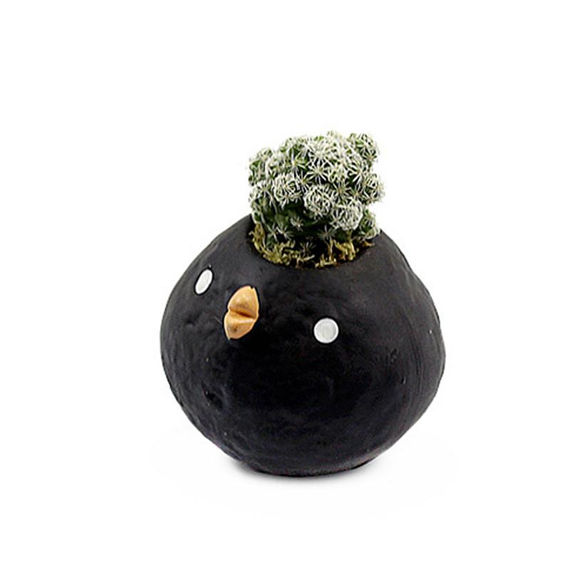 无趣工社 / 迷你多肉植物盆栽创意萌小鸟可爱花盆桌面