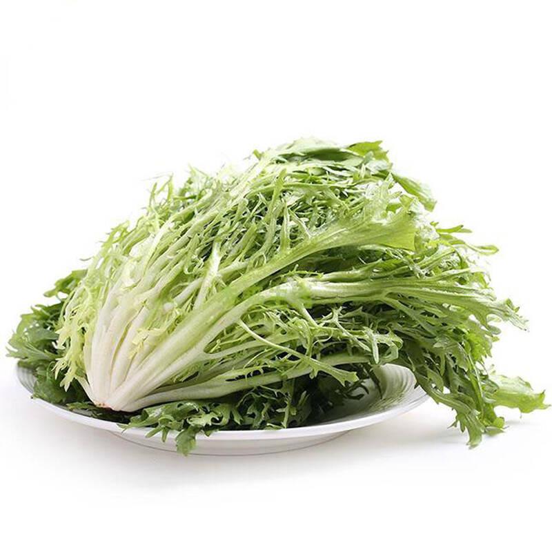 苦苣1斤 蔬菜色拉 苦叶生菜 新鲜as图片
